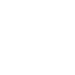 video Bang Branding